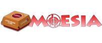 MOESIA Tienda online – Hamburguesas y comida para llevar en Palencia